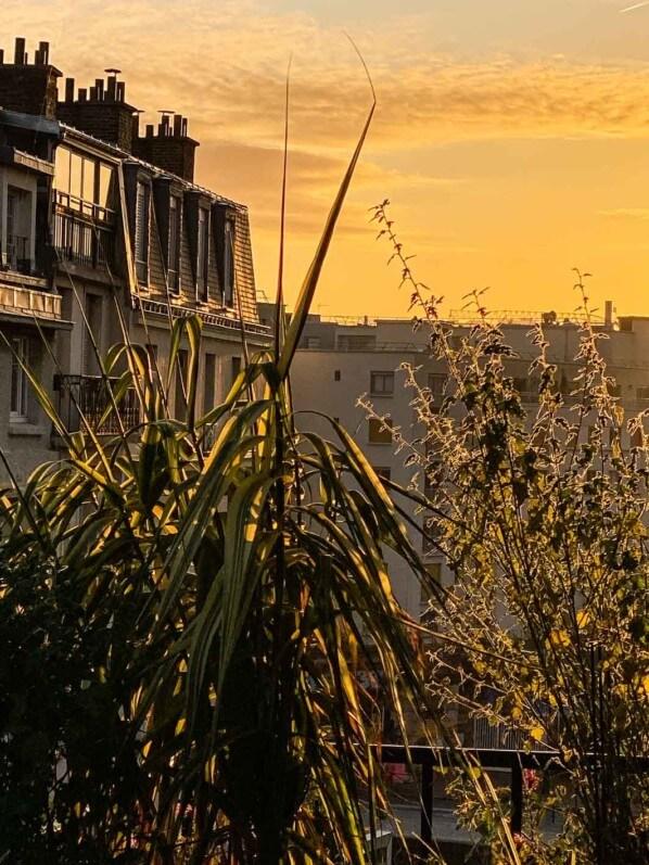 Soleil matinal en automne sur mon balcon parisien, Paris 19e (75)