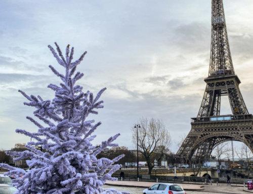 Début d'hiver et Noël parisiens très doux