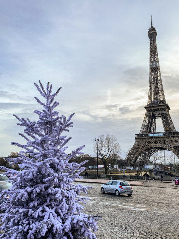 Sapin de Noël floqué, Trocadéro, Tour Eiffel, Paris 16e (75)