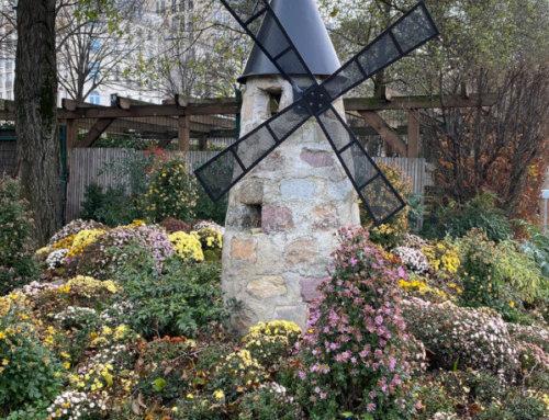 Un moulin à Paris