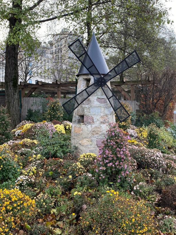 Moulin, parterre de chrysanthèmes en fin d'automne dans le Jardin du Port de l'Arsenal, Paris 12e (75)