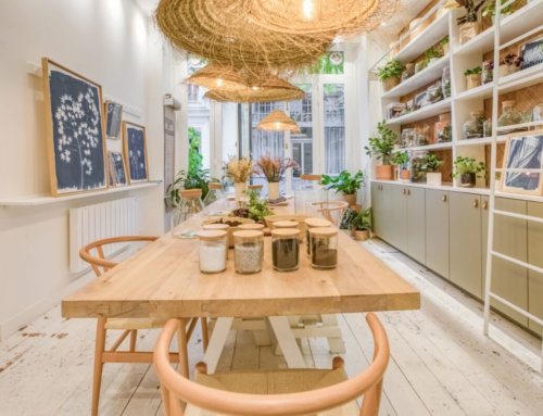 Une nouvelle adresse: IVY, un lieu multiple autour du monde végétal