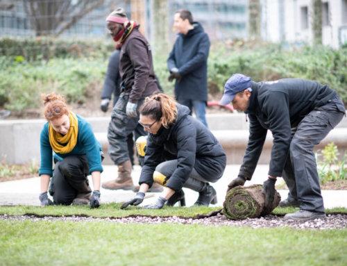 Paris La Défense : un parc prend vie au cœur de l'Esplanade
