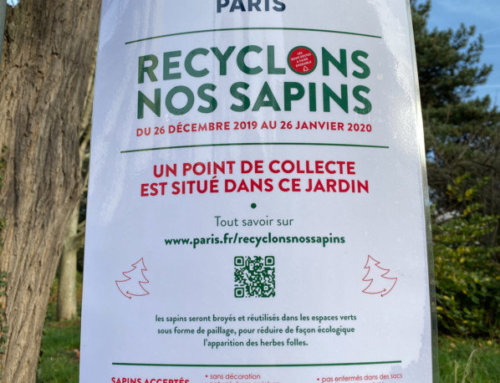 """Opération """"Recyclons nos sapins"""" à Paris"""