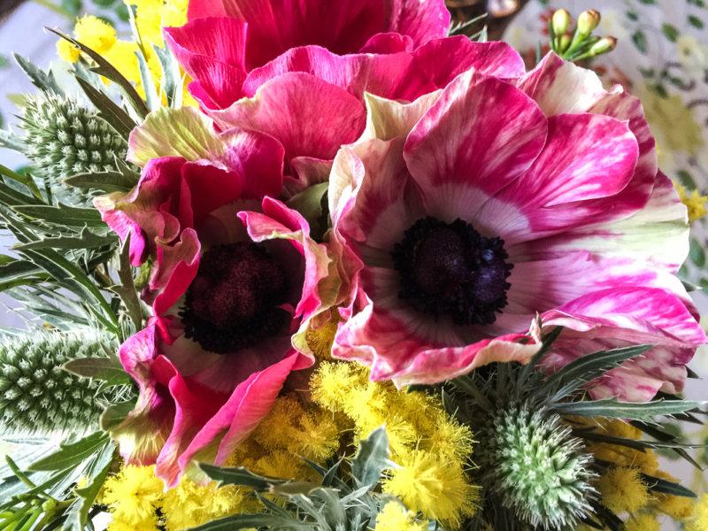 Bouquet d'anémones et de mimosa, création Aoyama Flower Market, Paris 7e (75)