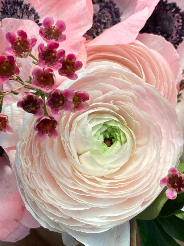 Bouquet de renoncules et d'anémones, composition Fleur de Nuit, Paris 12e (75)