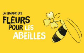 """""""Semaine des fleurs pour les abeilles"""", du 13 au 21 juin 2020, toute la France"""
