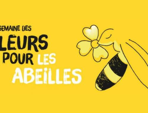 Semaine des fleurs pour les abeilles du 13 au 21 juin 2020