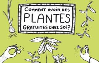 Comment avoir des plantes gratuites chez soi Juliette Patissier, éditions Ulmer, mars 2020