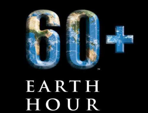 COVID-19 : le WWF France passe au digital pour Earth Hour