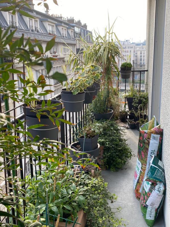 Mon balcon en fin d'hiver, avec des sacs de terreau pour jardiner, Paris 19e (75)