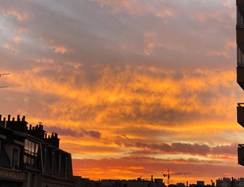 Hiver 2019 / 2020 le plus chaud jamais mesuré en France