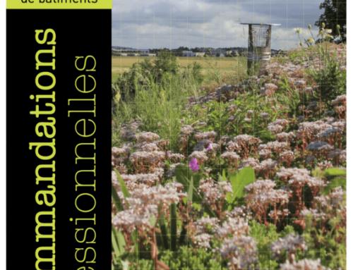 Recommandation professionnelle de l'UNEP sur les toitures végétalisées