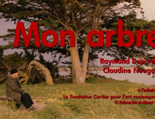 Un artiste, un arbre : restez connectés avec la Fondation Cartier