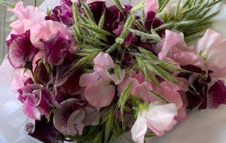 Bouquet de pois de senteur et graminées, fleurs coupées, Paris 12e (75)
