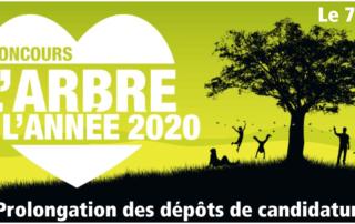 Concours de l'Arbre de l'année 2020, ONF, Terre Vivante