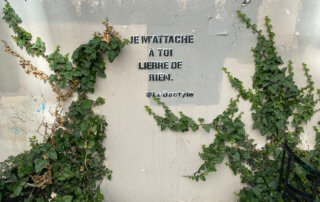 Inscription, citation, street art, lierre, au printemps dans la rue de Moussy, Paris 3e (75)
