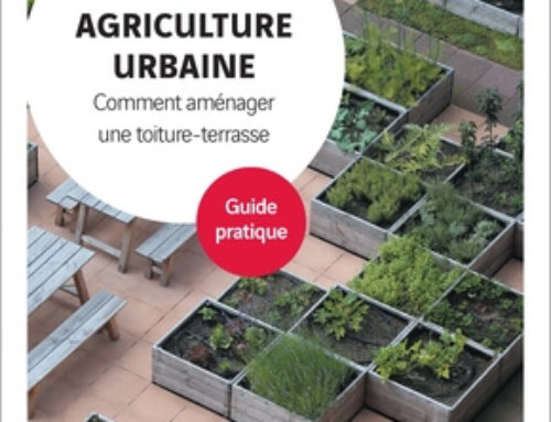 AGRICULTURE URBAINE Comment aménager une toiture-terrasse