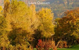 Le champ d'en face, Paysages sensibles, Laure Quoniam, préface de Chantal Colleu Dumond,éditions d'art Gourcuff Gradenigo, juillet 2020