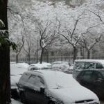 Forte chute de neige