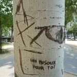 Graffiti sur arbre